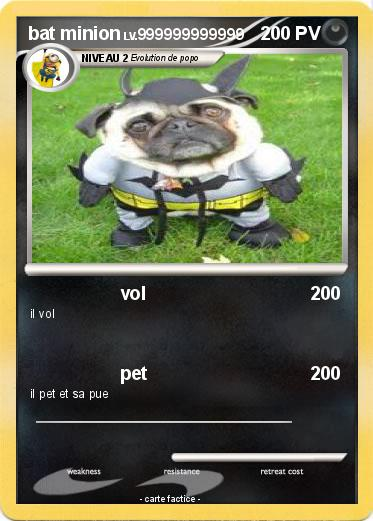 Pokemon bat minion