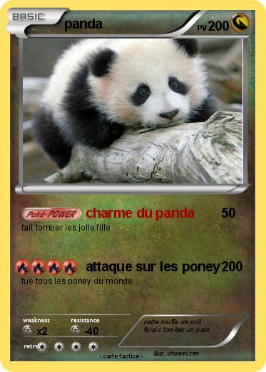 Pokemon panda
