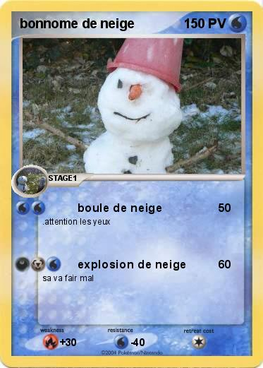 Pokemon bonnome de neige
