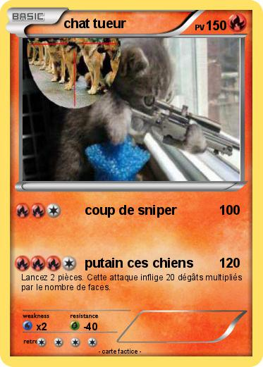 Pokemon chat tueur