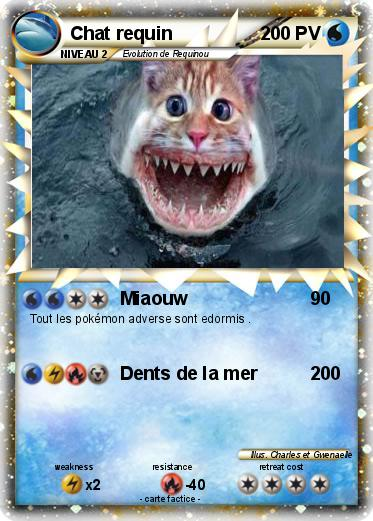 Pokemon Chat requin