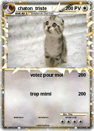 Pokemon chaton  triste
