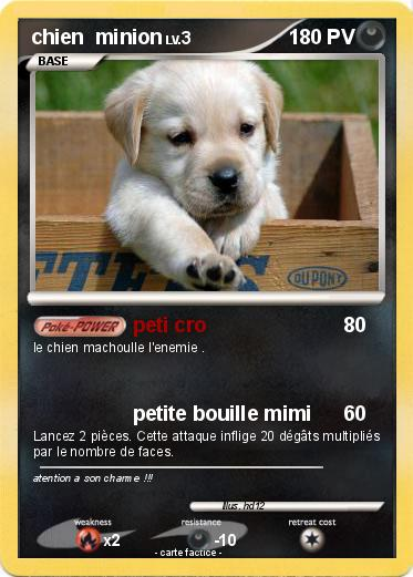 Pokemon chien  minion