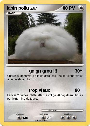 Pokemon lapin poilu