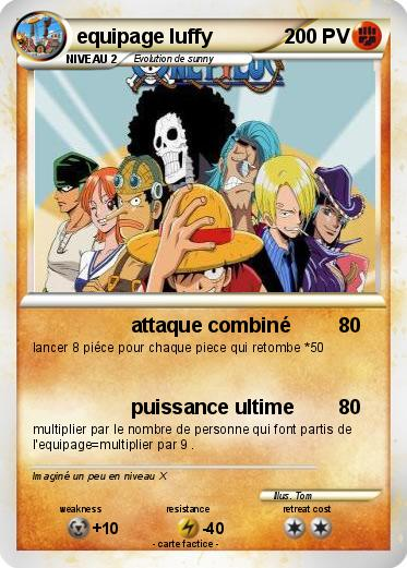 Pokemon equipage luffy