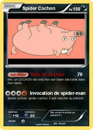 Pokemon Spider Cochon
