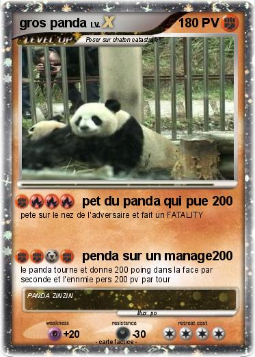 Pokemon gros panda