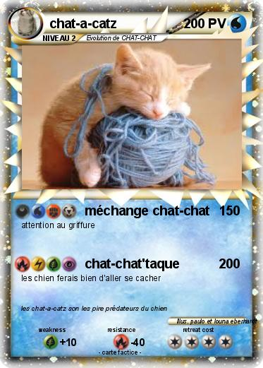 Pokemon chat-a-catz