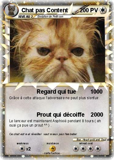 Pokemon Chat pas Content