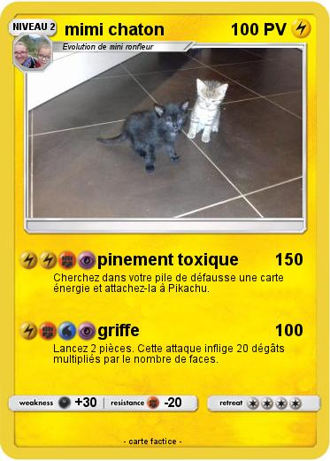 Pokemon mimi chaton