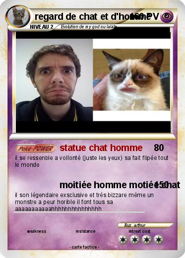 Pokemon regard de chat et d'homme