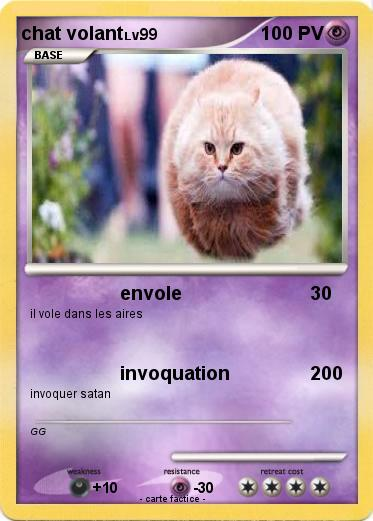 Pokemon chat volant