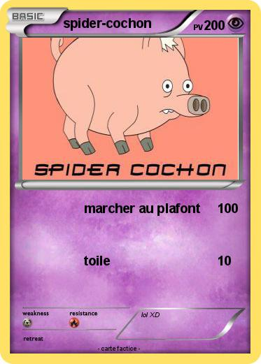 Pokemon spider-cochon