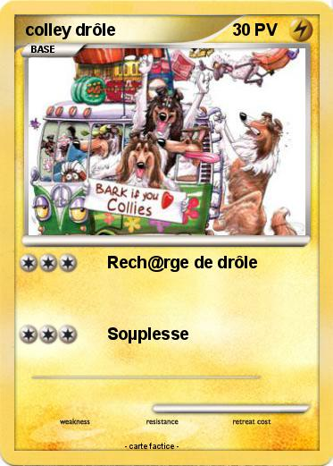 Pokemon colley drôle