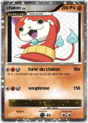 Pokemon chaton