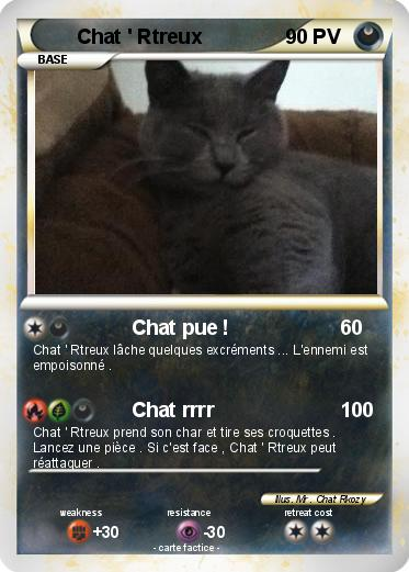 Pokemon Chat ' Rtreux