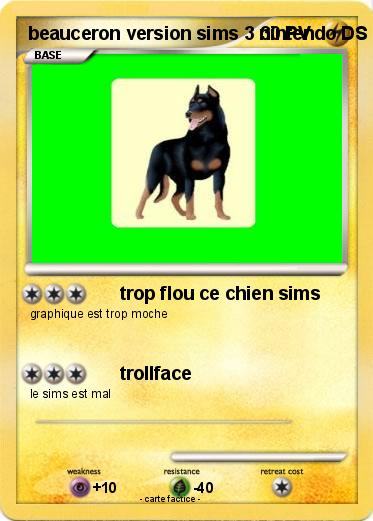 Pokemon beauceron version sims 3 nintendo DS