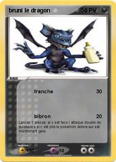 Pokemon bruni le dragon