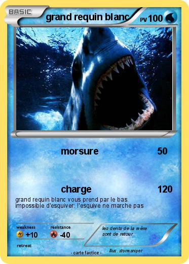 Pokemon grand requin blanc