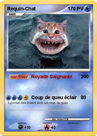 Pokemon Requin-Chat