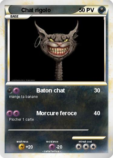 Pokemon Chat rigolo