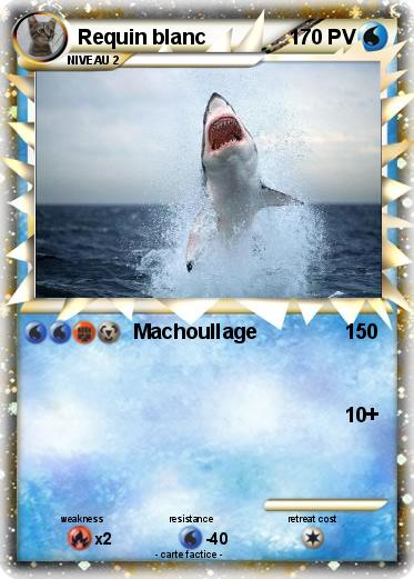 Pokemon Requin blanc