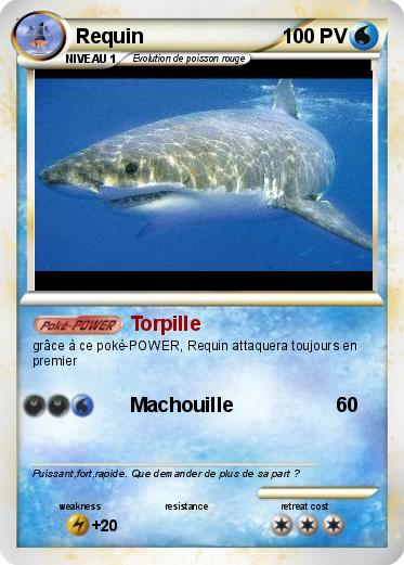 Pokemon Requin