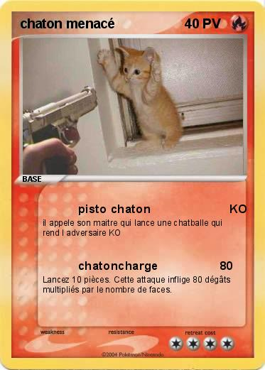 Pokemon chaton menacé