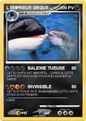 Pok mon l empreur orque baleine tueuse ma carte pok mon - Pokemon baleine ...