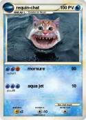 requin-chat