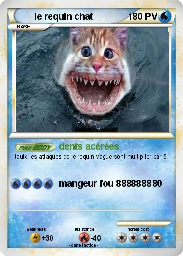Pokemon le requin chat