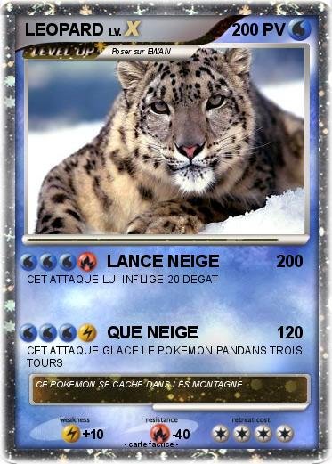 Pokemon LEOPARD