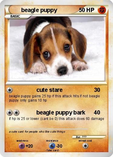 Pokmon beagle puppy 1 1 cute stare my pokemon card pokemon beagle puppy voltagebd Image collections