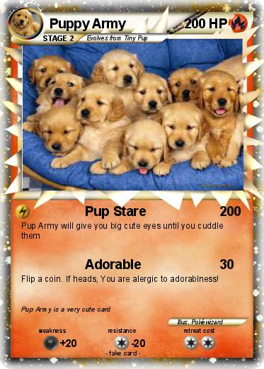 Popular Puppies Army Adorable Dog - 5ZPpGMpiQTgK  Gallery_656012  .jpg