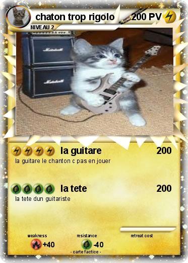 Pok mon chaton trop rigolo 2 2 la guitare ma carte pok mon - Photo de chaton rigolo ...