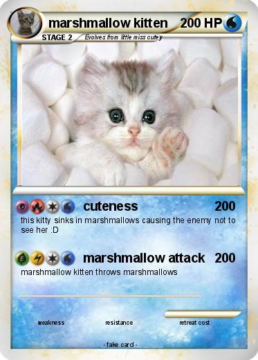 can a kitten drink milk