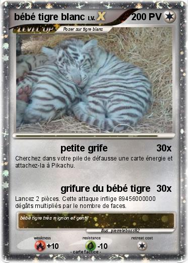 Pok mon bebe tigre blanc 8 8 petite grife ma carte pok mon - Bebe tigre mignon ...