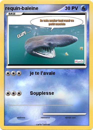 Pok mon requin baleine 10 10 je te l 39 avale ma carte - Pokemon baleine ...