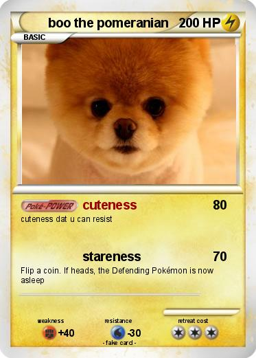 pomeranian language pok 233 mon boo the pomeranian cuteness my pokemon card 8323