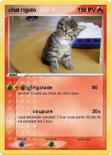 Pok mon chat rigolo rigolade ma carte pok mon - Images de chats rigolos ...