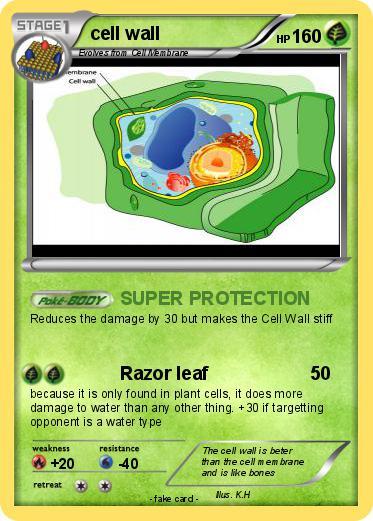 pokémon cell wall 52 52 super protection my pokemon card