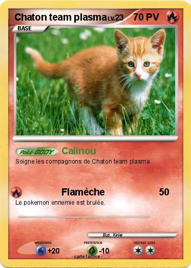 Pok mon chaton team plasma 1 1 calinou ma carte pok mon - Carte pokemon team plasma ...