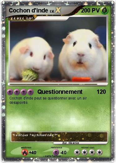 Pok mon cochon d inde 63 63 questionnement ma carte - Cochon pokemon ...