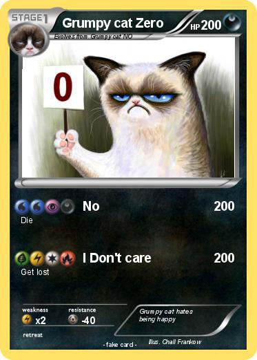 grumpy cat dont care