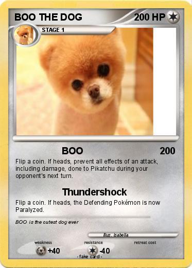 Pok 233 Mon Boo The Dog 16 16 Boo My Pokemon Card