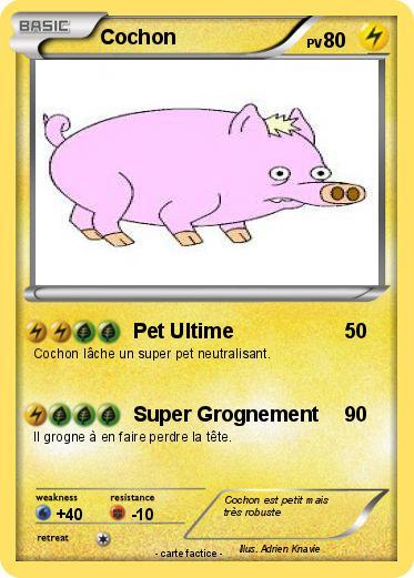 Pok mon cochon 255 255 pet ultime ma carte pok mon - Cochon pokemon ...