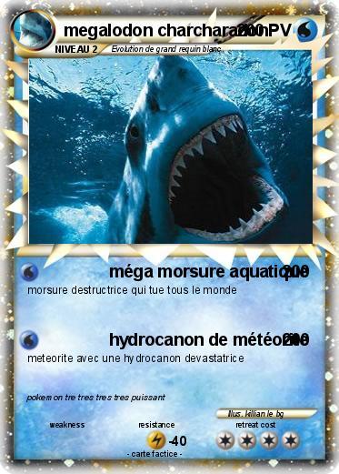 Pok 233 Mon Megalodon Charcharadon M 233 Ga Morsure Aquatique