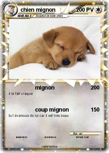 Pok mon chien mignon 19 19 mignon ma carte pok mon - Coloriage de chiot a imprimer ...