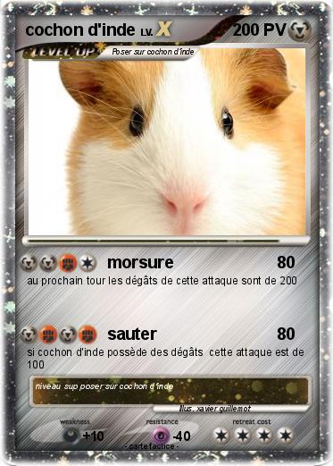 Pok mon cochon d inde 16 16 morsure ma carte pok mon - Cochon pokemon ...