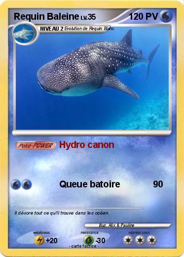 Pok mon requin baleine 7 7 hydro canon ma carte pok mon - Pokemon baleine ...